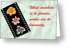 Floral Filmstrip Greeting Card by Bill Barber