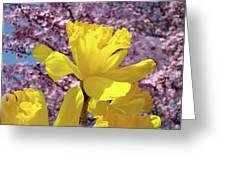 Floral Fine Art Daffodils Art Prints Spring Flowers Sunlit Baslee Troutman Greeting Card