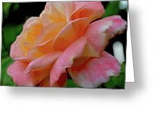 Floral Glow Greeting Card