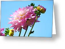 Floral Landscape Art Print Pink Dahlia Flower Blue Sky Canvas Baslee Troutman Greeting Card