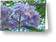 Floral Landscape Blue Hydrangea Flowers Baslee Troutman Greeting Card