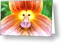Floral Monkey Pink Yellow And Red Greeting Card