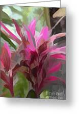 Floral Pastel Greeting Card by Tom Prendergast