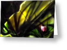 Floral Rays Greeting Card