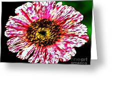 Floral Red And White Painting  Greeting Card