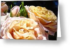 Floral Roses Garden Art Prints Baslee Troutman Greeting Card