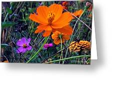 Floral Show Greeting Card