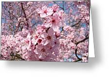Floral Spring Art Pink Blossoms Canvas Baslee Troutman Greeting Card