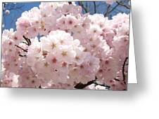Floral Tree Blossoms Flowers Pink Art Baslee Troutman Greeting Card