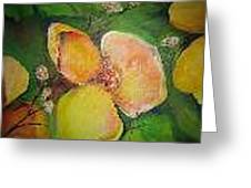 Floral Untilted Greeting Card