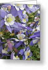 Floral3 Greeting Card