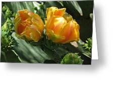 Flores De Cactus Greeting Card