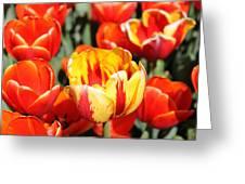 Floriade 10 Greeting Card