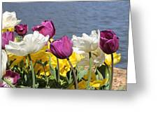 Floriade 9 Greeting Card