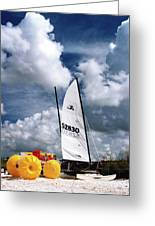 Florida Beach 3 Greeting Card