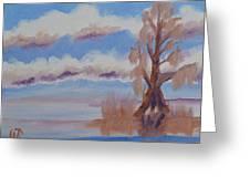 Florida Cypress Greeting Card