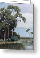 Florida Cypress With Birds Greeting Card