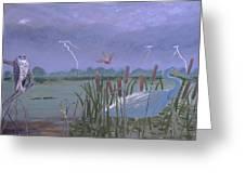 Florida Everglades Thunderstorm Greeting Card