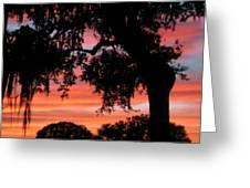 Florida Firesky Greeting Card