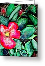 Florida Flower Greeting Card