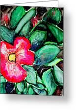 Florida Flower Greeting Card