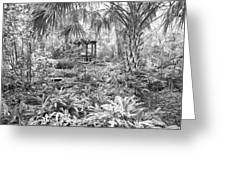 Florida Garden Scene_009 Greeting Card