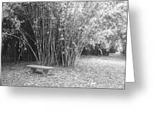 Florida Garden Scene_010 Greeting Card