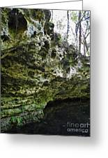 Florida Grotto Greeting Card
