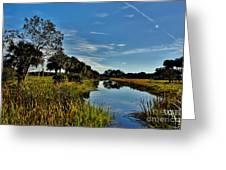 Florida Lands 7 Greeting Card