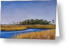 Florida Marsh In June Greeting Card