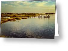 Florida Morning Greeting Card