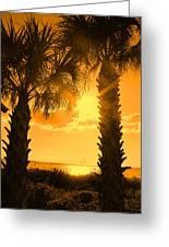 Florida Orange Greeting Card