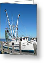 Florida Shrimper Greeting Card