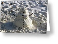Florida Snowman Greeting Card