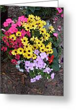 Florida Spring Flowers Greeting Card