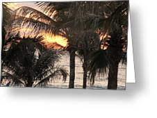 Florida Sunset 2 Greeting Card