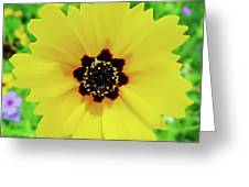 Florida - Yellow - Wildflower Greeting Card