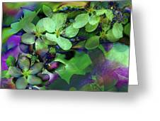 Flow Ers Squared Greeting Card