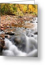 Flow In Sedona Greeting Card