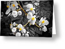 Flow Of Gold Greeting Card