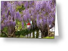 Flower - Wisteria - A House Of My Own Greeting Card by Mike Savad
