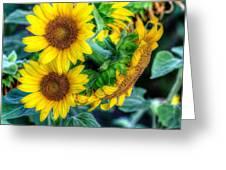Flower #39 Greeting Card