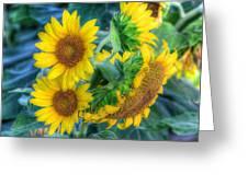 Flower #40 Greeting Card