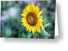 Flower #42 Greeting Card