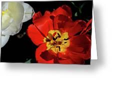 Flower 55 Greeting Card