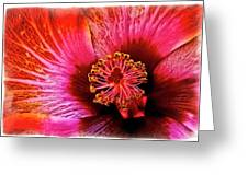 Flower 69f Greeting Card