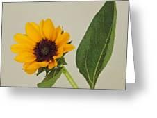 Flower 8-11 Greeting Card