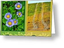Flower And Fields Greeting Card