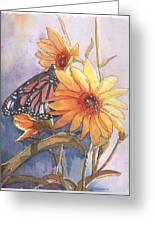 Flower And Monarch Greeting Card