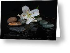 Flower And Stone Greeting Card